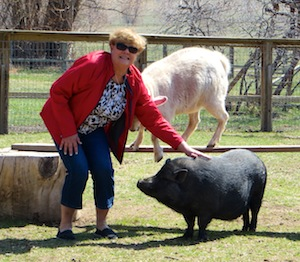Petting a pig for the first time puts a smile on everyone's face.