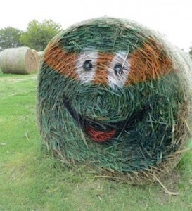 Teenage Mutant Ninja Hay!