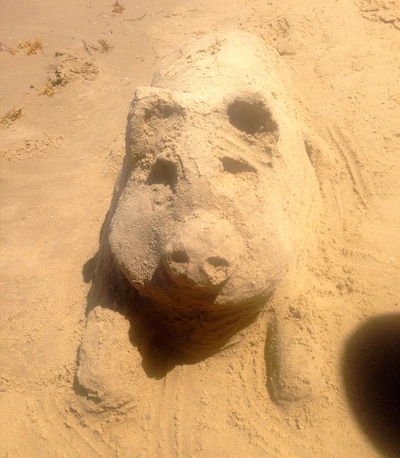 Oh Doinkers.  You are so, so cute.  Sand becomes you.
